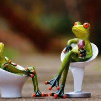 twee kikkers in gesprek